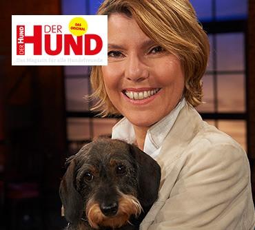Pressebericht Spenden-Marathon für Tiere Der_Hund_2019