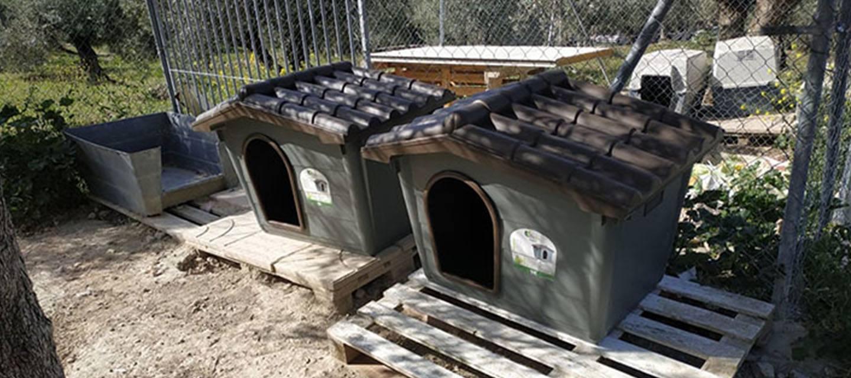 pro Hund andaluz Spendenankunft Spenden-Marathon Hundehütten