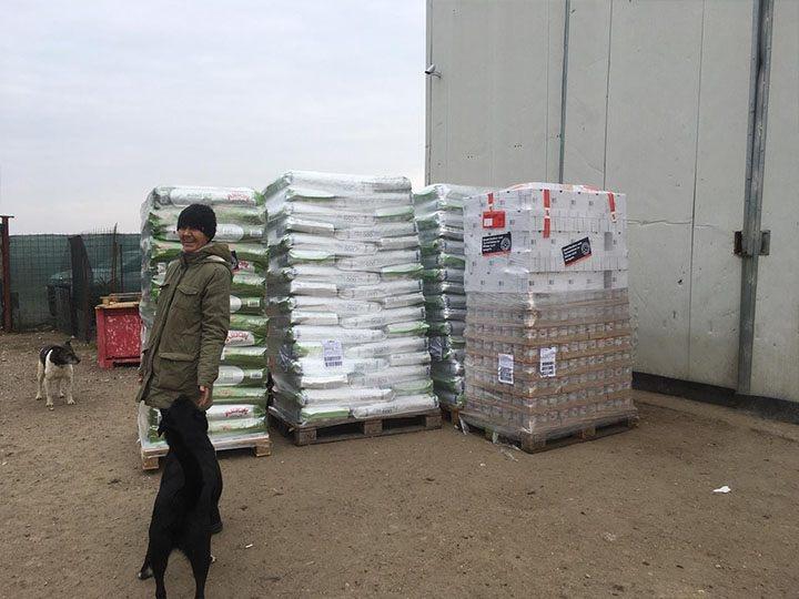 Initiative für Strassentiere e.V.-Futterspendenankunft-januar-2020-Spenden-Marathon 2019-Rumänien (4)