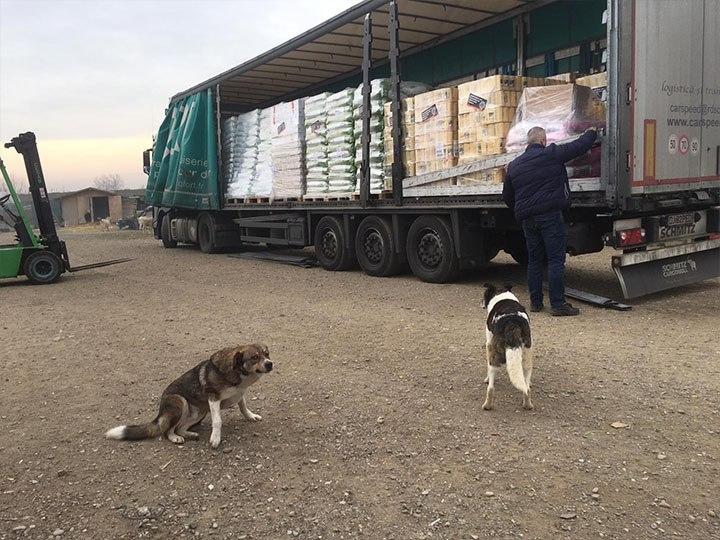 Initiative für Strassentiere e.V.-Futterspendenankunft-januar-2020-Spenden-Marathon 2019-Rumänien (6)