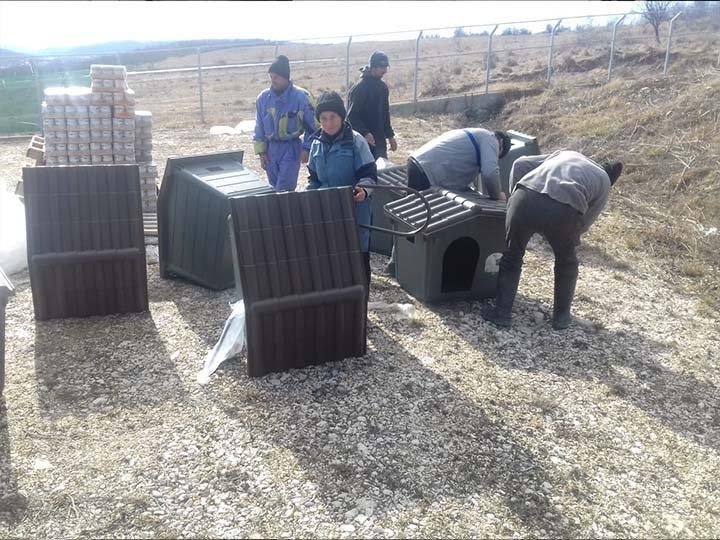 Freundeskreis der Strassenhunde in Campulung e.V.-Futterspendenankunft-februar-2020-Spenden-Marathon-2019-Rumänien (4)