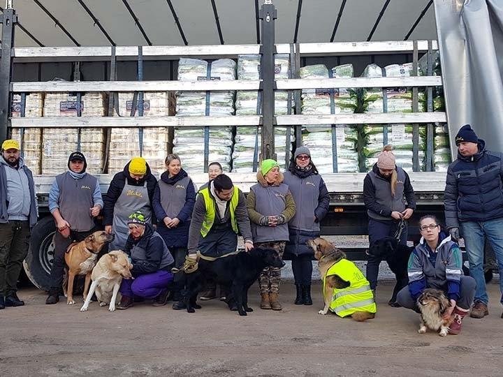 Pfoten in Not e.V.-Futterspendenankunft-februar-2020-Spenden-Marathon-2019-Lettland (5)