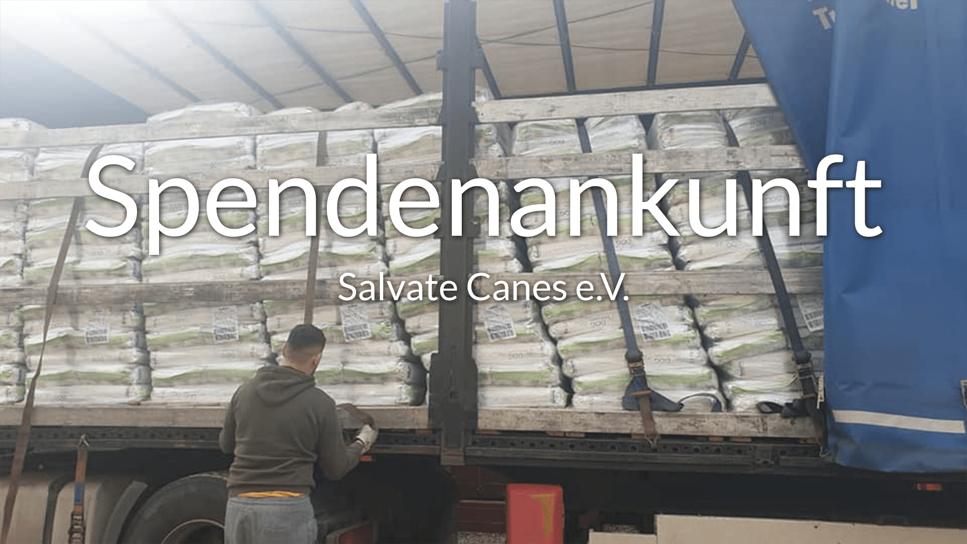 Salvate Canes e.V.-Futterspendenankunft-februar-2020-Spenden-Marathon-2019-Rumänien-VIDEO