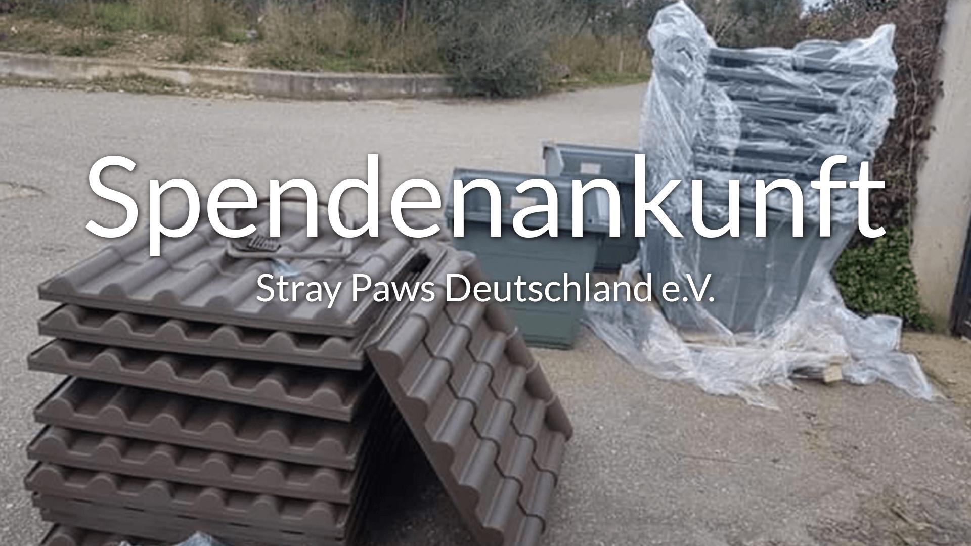 Stray-Paws_Thumbnail_Videos