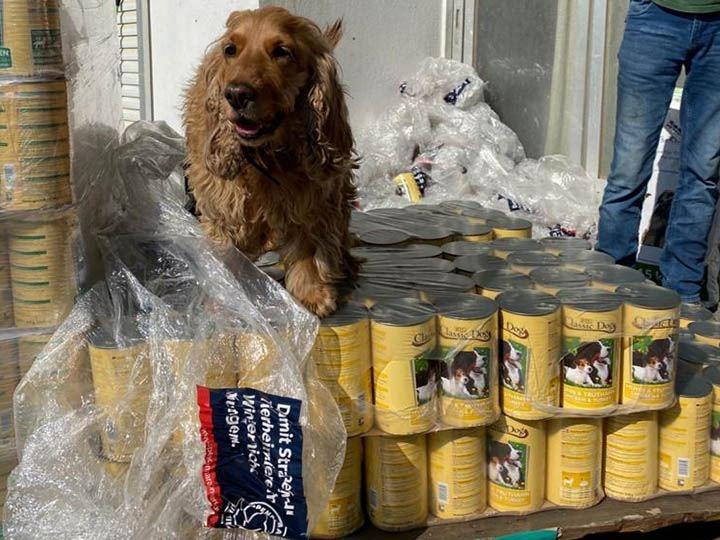 Animal Pard Net e.V.-Futterspendenankunft-maerz-2020-Spenden-Marathon-2019-Griechenland-2