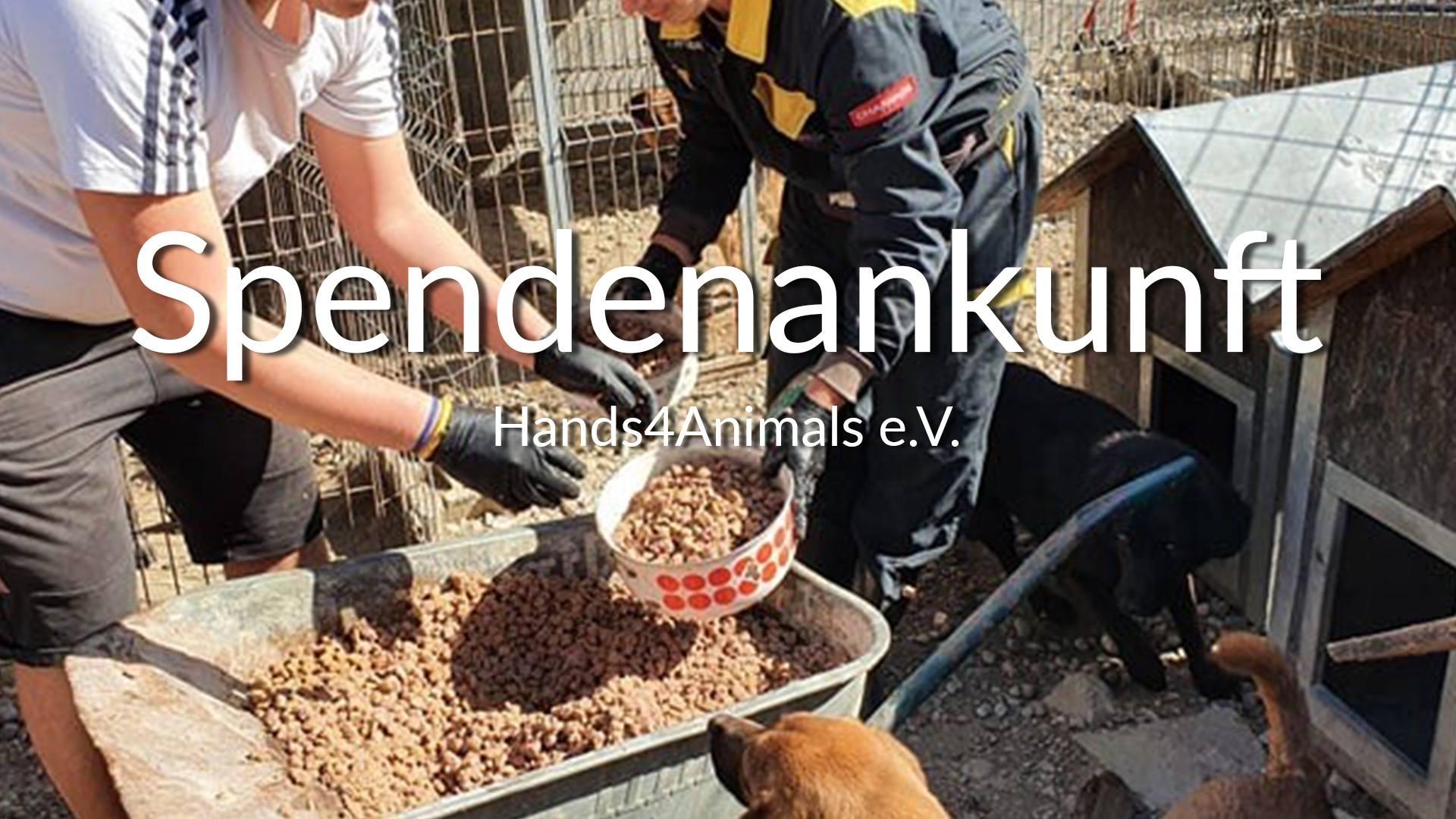 Hands4Animals e.V.-Futterspendenankunft-april-2020-Spenden-Marathon-2019-KroatienVIDEO