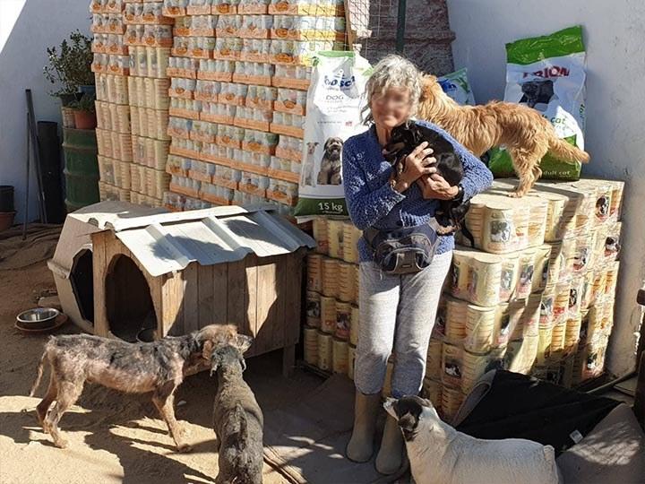 TiNo-e.V.-Futterspendenankunft2019-Spenden-Marathon2018-Portugal(1)