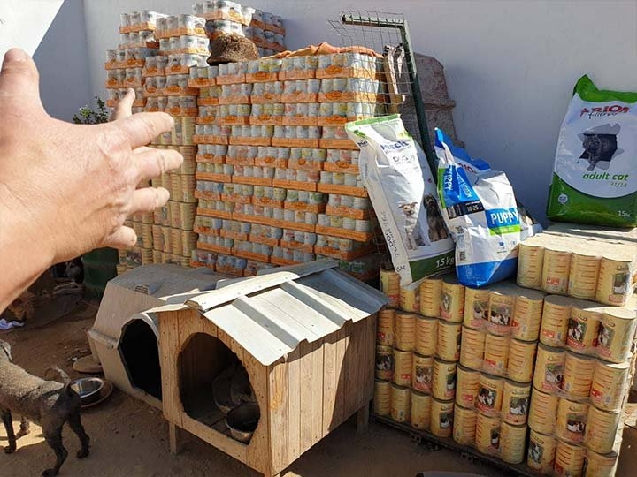 TiNo-e.V.-Futterspendenankunft2019-Spenden-Marathon2018-Portugal(4)