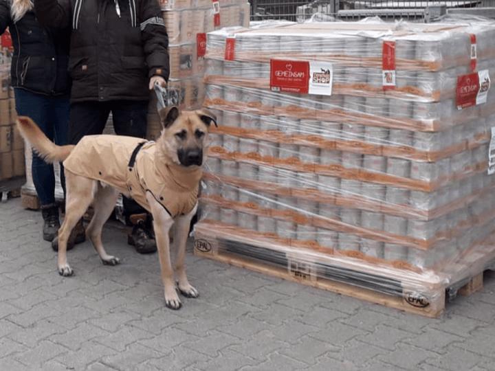Tierschutzverein-Tierheim-Viernheim-e.V.-Futterspendenankunft2019-Spenden-Marathon2018-Deutschland(2)