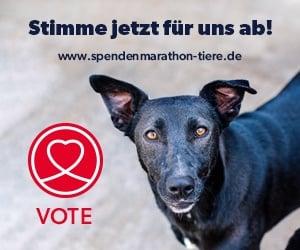 Spenden-Marathon fuer Tiere 2021